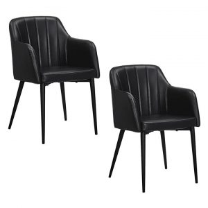 Baines Faux Leather Dining Chair (Set of 2)